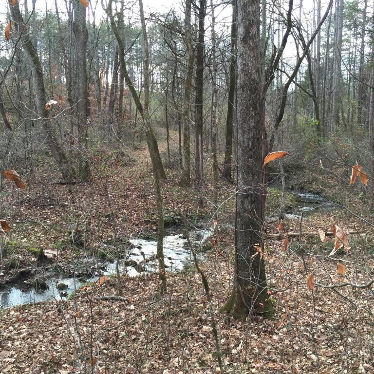 Recreational,Rural,Single Family - Lenoir City, TN (photo 5)