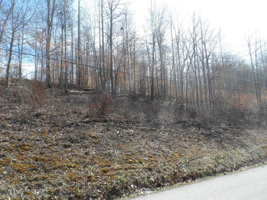 Recreational,Rural,Single Family - Jacksboro, TN (photo 4)