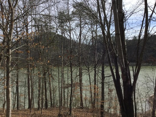 Lake Front,Single Family,Waterfront Access - New Tazewell, TN (photo 1)