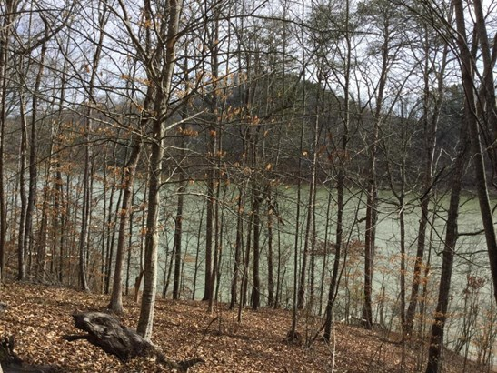 Lake Front,Single Family,Waterfront Access - New Tazewell, TN (photo 5)