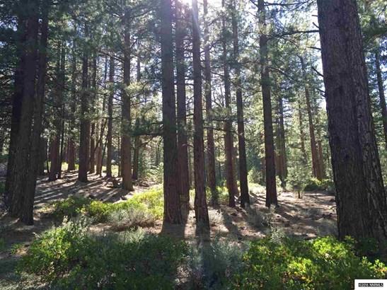 Hwy 89 160 Acres, Markleeville, CA - USA (photo 4)