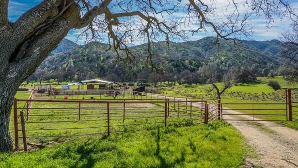 51563 Los Gatos Road, King City, CA - USA (photo 5)
