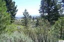 210 Lower Manzanita Lane, Woodfords, CA - USA (photo 1)