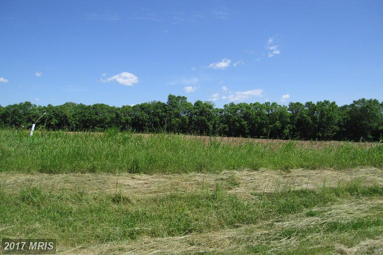 Lot-Land - CLEAR SPRING, MD (photo 1)
