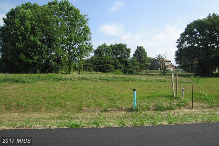 Lot-Land - WILLIAMSPORT, MD (photo 3)