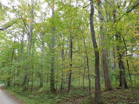 Residential Land - Goochland, VA (photo 1)
