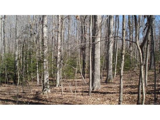 Residential Land - Goochland, VA (photo 2)