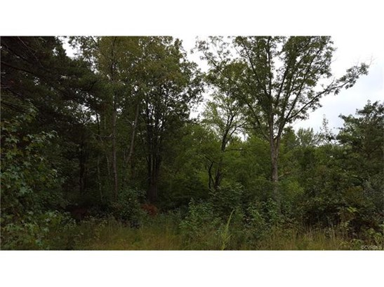 Residential Land - Powhatan, VA (photo 2)