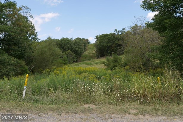 0 Happy Valley Rd, Orkney Springs, VA - USA (photo 4)