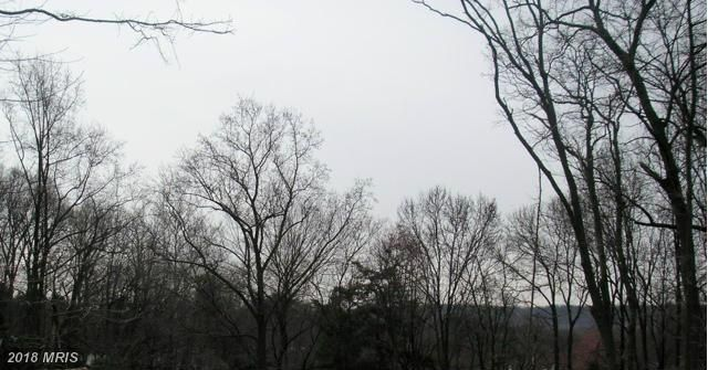 1101 Finley Ln, Alexandria, VA - USA (photo 2)