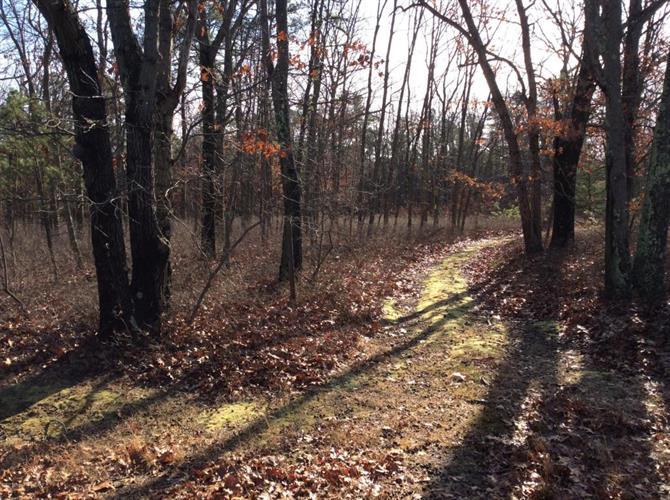 4 Turkey Swamp Road, Freehold, NJ - USA (photo 2)