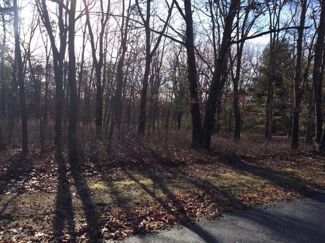 4 Turkey Swamp Road, Freehold, NJ - USA (photo 3)
