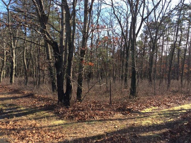 4 Turkey Swamp Road, Freehold, NJ - USA (photo 4)