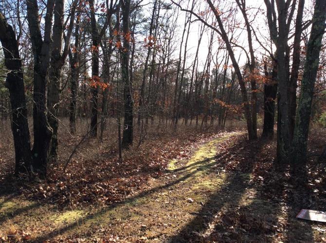 4 Turkey Swamp Road, Freehold, NJ - USA (photo 5)