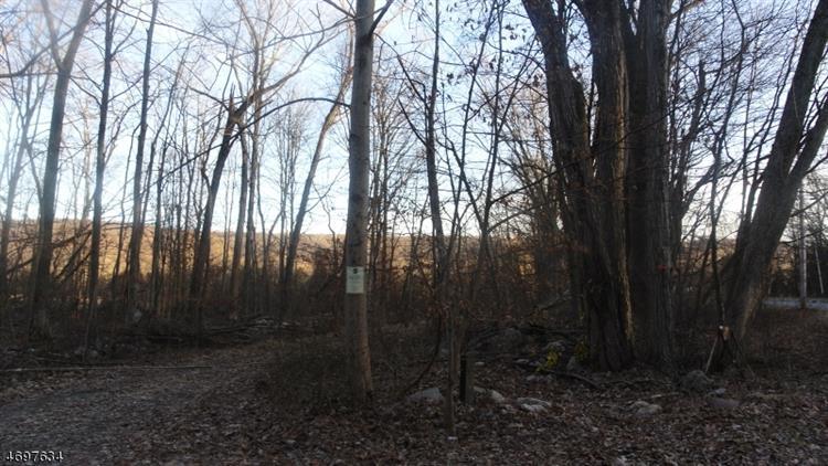 100 State Park Rd, Frelinghuysen, NJ - USA (photo 2)