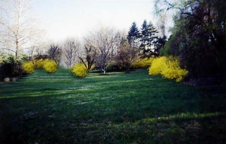 26 Horseneck Rd, Montville Township, NJ - USA (photo 1)