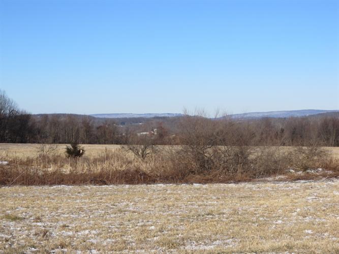 39 Old Beaver Run Rd, Lafayette, NJ - USA (photo 1)