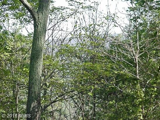Seven Oaks Dr, Bentonville, VA - USA (photo 3)