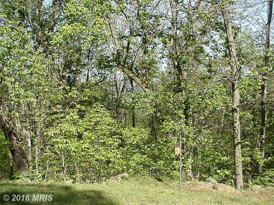 Seven Oaks Dr, Bentonville, VA - USA (photo 4)