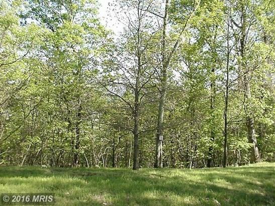 Seven Oaks Dr, Bentonville, VA - USA (photo 5)