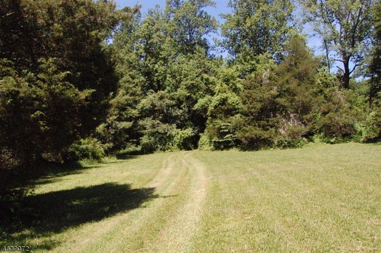 622 County Rd 579, Alexandria Township, NJ - USA (photo 2)