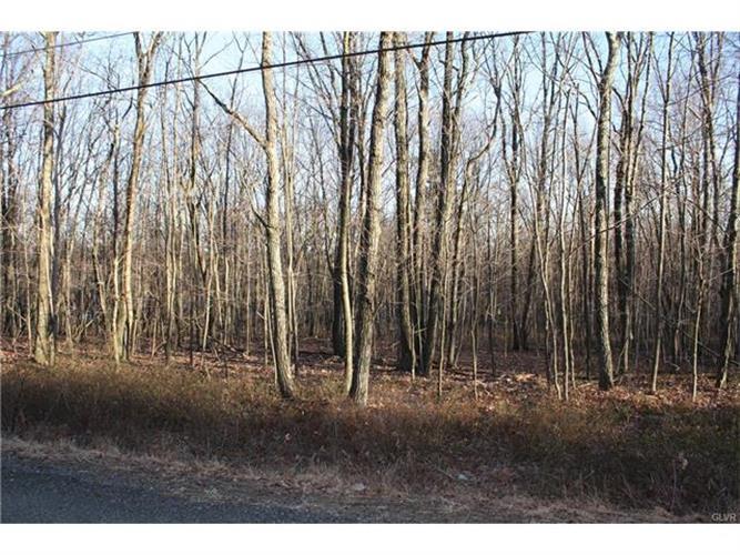 269 Valley View Drive, Lehighton, PA - USA (photo 4)