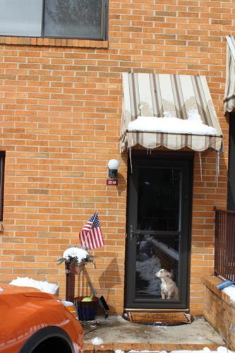 321 Spring Street 8, Red Bank, NJ - USA (photo 1)
