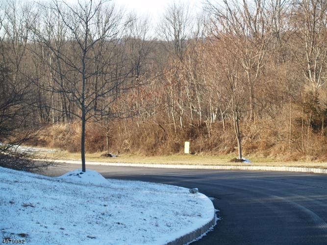 0 Gordon Ct, Holland Township, NJ - USA (photo 3)