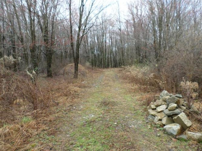 Lot#2 Greenville Turnpike, Port Jervis, NY - USA (photo 1)
