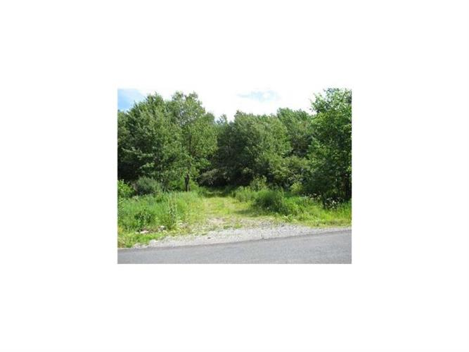 Lot#2 Greenville Turnpike, Port Jervis, NY - USA (photo 4)