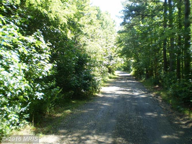 4574road Turkey Acres Rd, King George, VA - USA (photo 1)