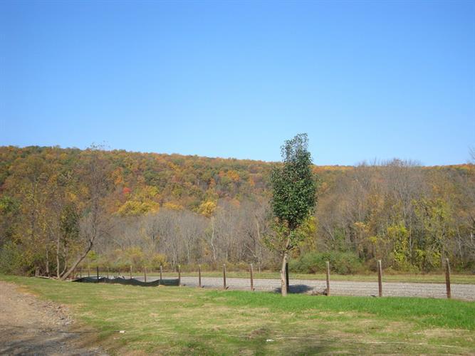 276 W Mill Rd, Township Of Washington, NJ - USA (photo 5)