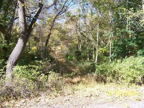 1561 State Route 57, Allamuchy Twp, NJ - USA (photo 1)