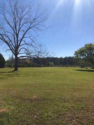 Land - Valdosta, GA (photo 3)