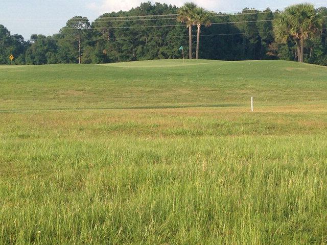 Land - Adel, GA (photo 3)