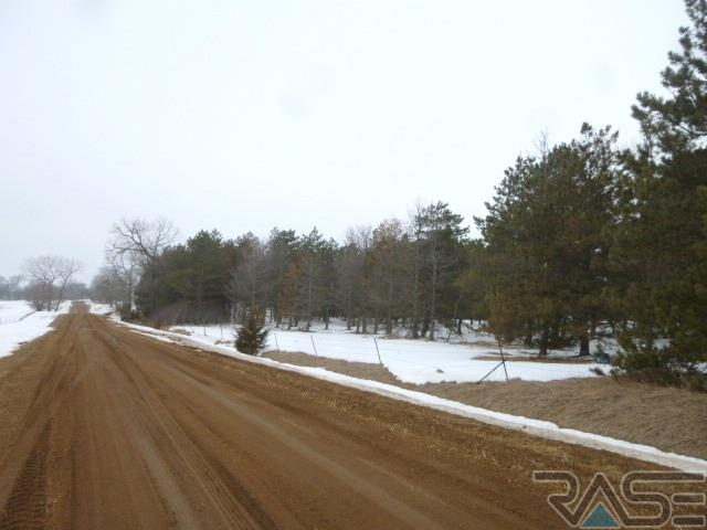 Resi Over 1 acre - Viborg, SD (photo 3)