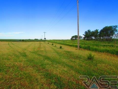 Resi Over 1 acre - Parker, SD (photo 5)