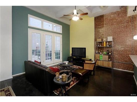 Condo,Condo/Coop/Villa, Traditional,Loft - St Louis, MO (photo 2)