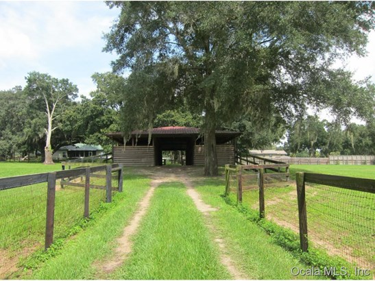 Farm - Ocala, FL (photo 5)