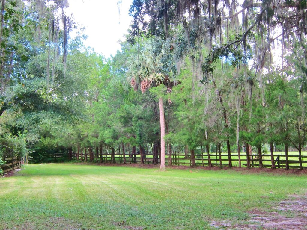Single Family Acreage - Ocala, FL (photo 3)