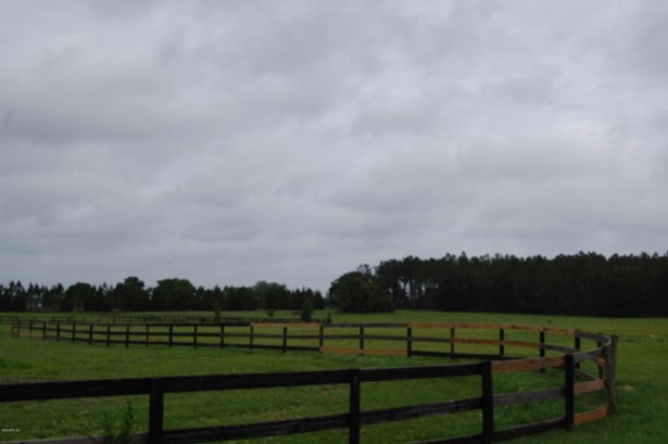 Farm - Morriston, FL (photo 5)