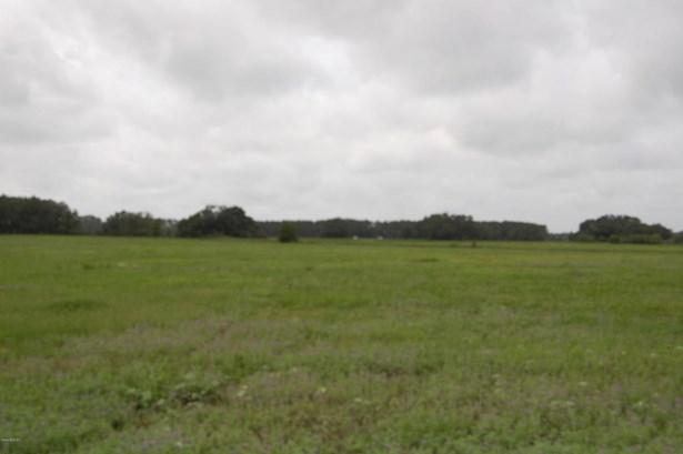 Vacant Land - Morriston, FL (photo 4)