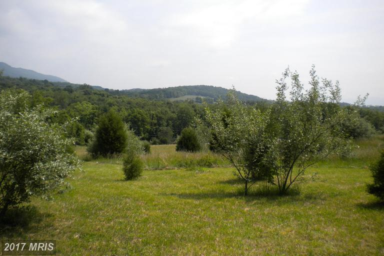 Lot-Land - WINCHESTER, VA (photo 2)