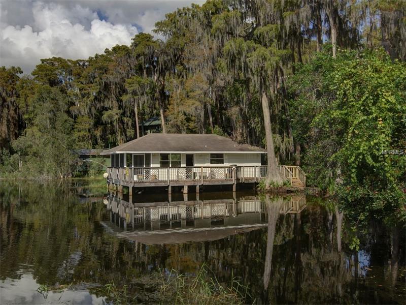 Single Family Use - ODESSA, FL (photo 1)