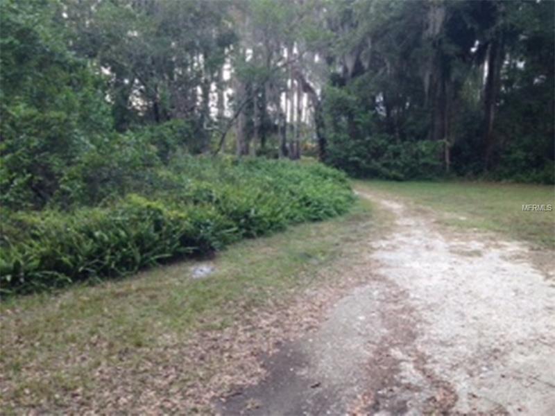 Single Family Use - ODESSA, FL (photo 2)