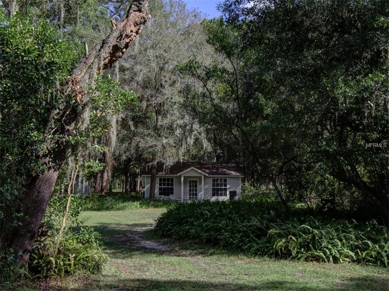 Single Family Use - ODESSA, FL (photo 3)