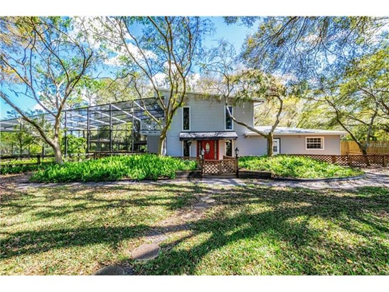 Single Family Home, Ranch - LUTZ, FL (photo 1)