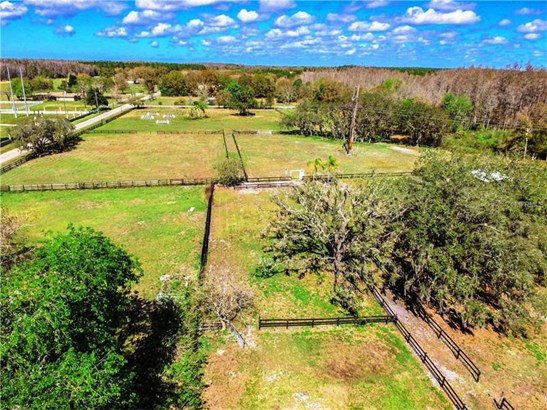 Single Family Home, Ranch - LUTZ, FL (photo 4)