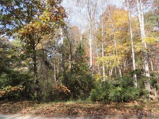 Land - Concord, VA (photo 1)