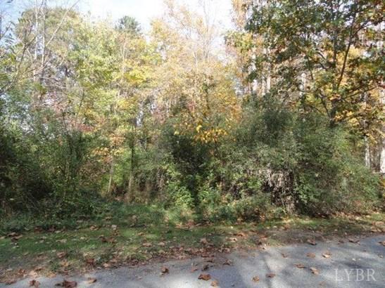 Land - Concord, VA (photo 2)